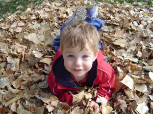 Zac in a pile of Leaves, Oct 17th